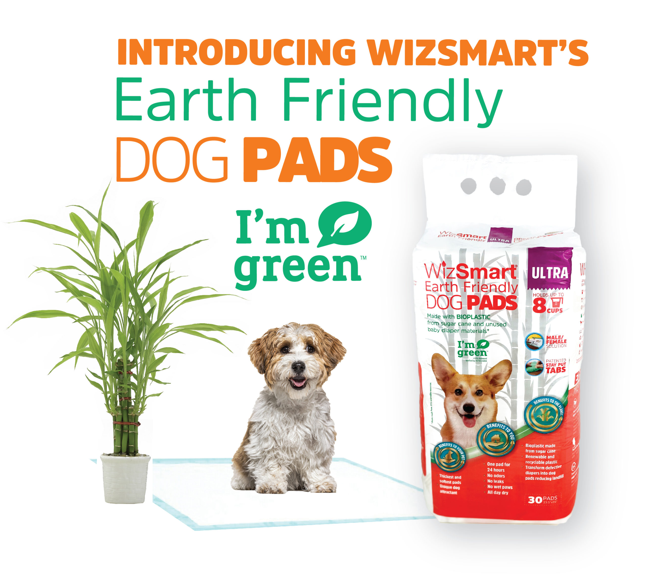 new earth friendly ad with product shot