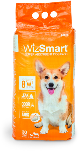 WizSmart Package
