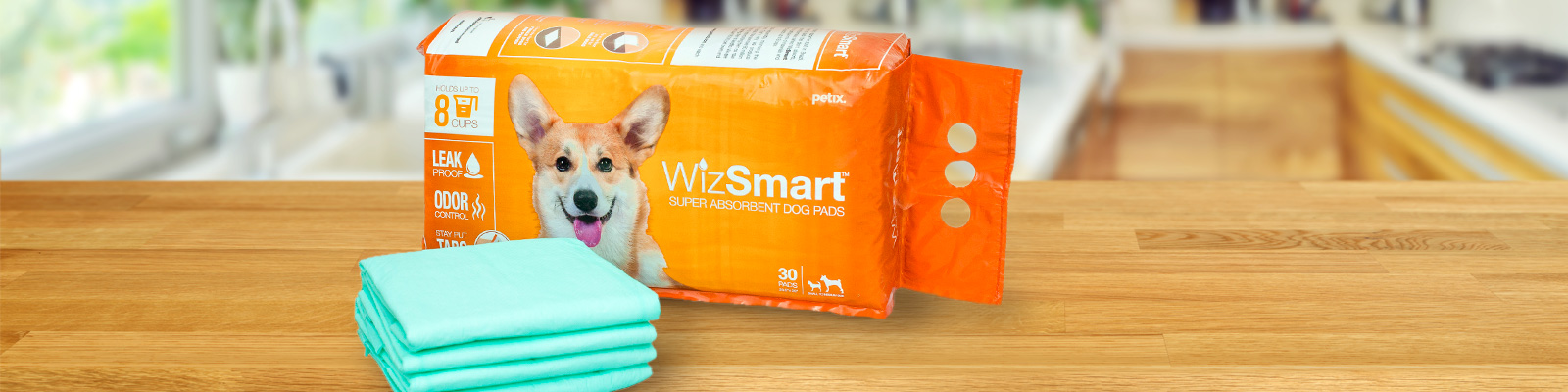 Wizsmart Pads and Package